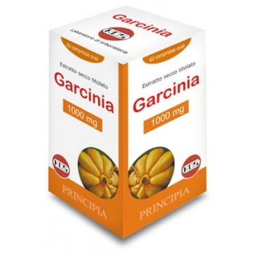 GARCINIA 1000MG 60CPR