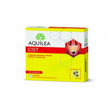 AQUILEA CIST 14 BUSTINE