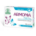 ARMONIA FAST 1MG MELAT120CPR